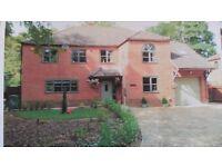 6 bedroomed detatched house, Little Fransham, Norfolk £392000 poss p/ex for Norwich property