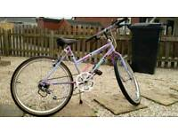 Raleigh Cassis Small Size Women's Bike