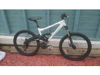 Saracen Raw DX downhill mountain bike