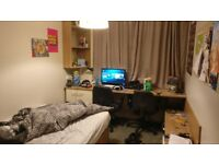 1 bedroom w/ ensuite and shower 2 month rent