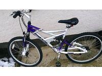 Ladies bike adult