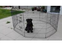 PET PEN FOR PUPPY SMALL DOG RABBIT OR GUINEA PIG