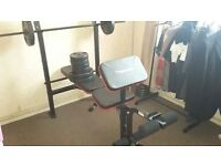 MAXIMUSCLE WEIGHT BENCH WITH METAL AND PLASTIC WEIGHTS
