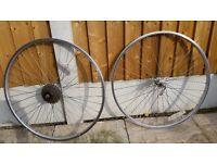 2 mountain bike wheels