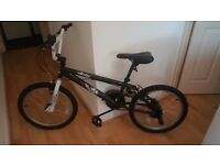 Jester BMX with Stunt Pegs - Hardly Used