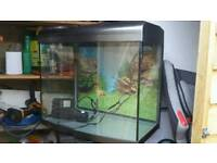 90 liter fish tank for sale