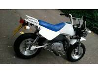 Skyteam baja 125 monkey bike