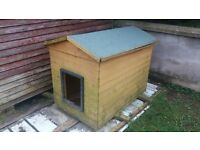 large dog house to sell