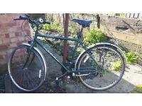 Green bike cycle vintage Universal City Sticker
