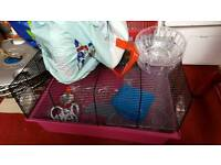 Hamster cage with extras