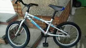 Small first Blowfish bike.