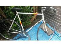 Men's bike. Racer bike