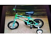 Boys Raleigh jungle bike