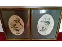 6 Prints Of Birds