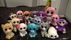17 TY Beanie Boo teddy bears in excellent xondition