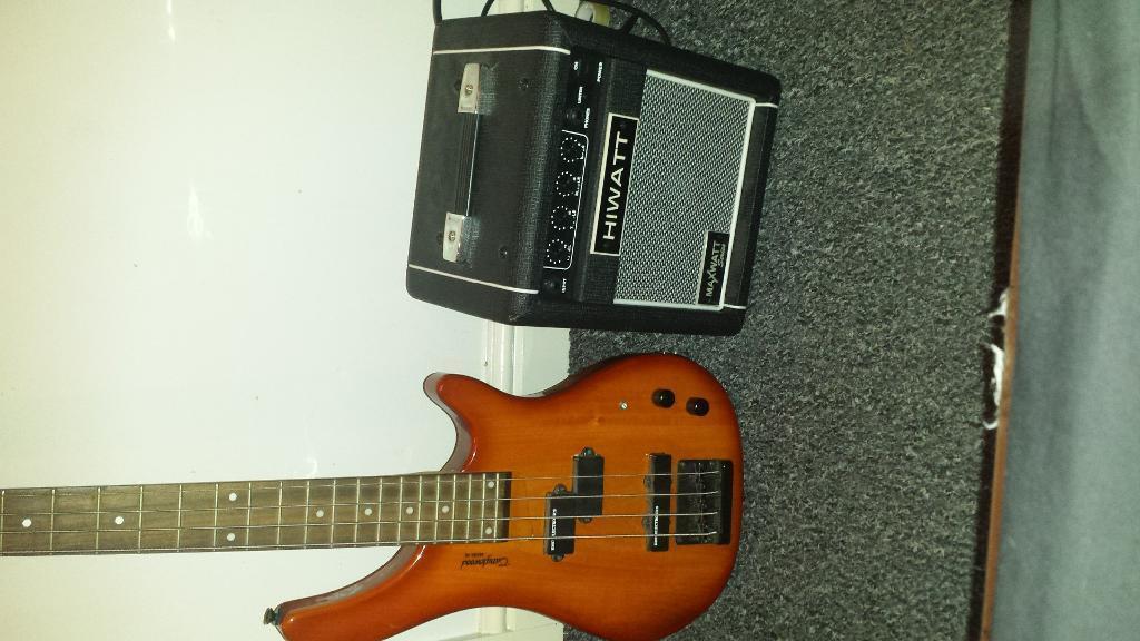 Tenson Guitars Bass Bass Guitar And Amplifier
