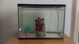 Small fishtank