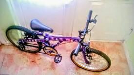 Street wise bike
