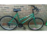 Adults Apollo mountain bike