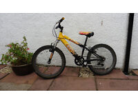 "Boys bike Raleigh 20"" wheels £20 ono"