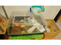 Hamster,cage and accessories