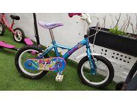 Used Apollo bike 3-5 yrs.