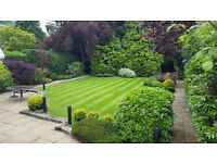 Gardener required for the small gardening company.