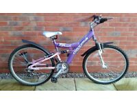 Girls Bike (16 inch)
