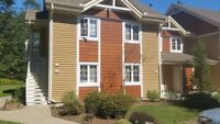 House cleaner for condo in Mont Tremblant