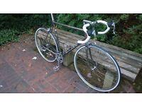 Raleigh M-Trax 8000-RL SBDU Road Bike 60cm