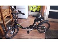 Electric bike ( E-GO viking) for sale £800 ono good condition