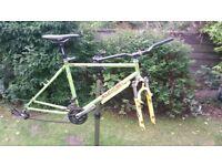 retro rare orange cr16r mountain bike project