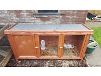 #* NOW SOLD BUNNIES and full cage set up