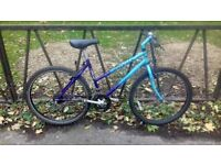"""Ladies Mountain Bike Bicycle For Sale. Fully Serviced, Ready To Ride & Guaranteed. 19"""" Frame"""