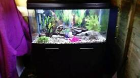 AQUA ONE AR 980 FISHTANK IN BLACK WITH MATCHING CABINET IN GOOD CONDITION