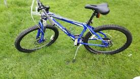 "21 speed 16"" mountain bike"