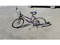 Raleigh womens bike