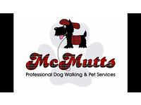 McMutts Professional Dog Walking and Pet Services