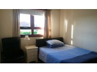 Double room to rent Montrose