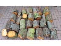 Firewood/ Logs