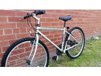 Small Mountain Bike with Road Forks - Perfect Commuter