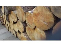 Wanted trees/logs for firewood