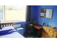 LARGE DOUBLE ROOM FOR RENT (SINGLE OCCUPANCY) - £85 pw