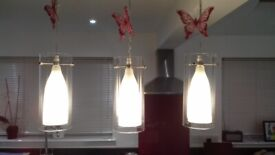Wanted - Pendant frosted glass light shades