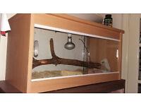 reptile vivarium for sale