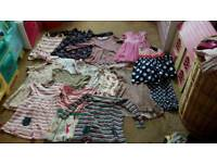Girls 2-3 dresses/tunics