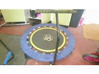 Rebounder and stability bar