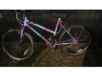 Ladies Raleigh bike ( 26 inch wheel / 18 inch frame)
