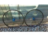 Bontrager tlr 700c wheels disc