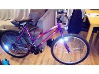 Adult ladies bike